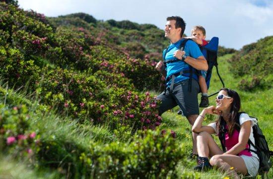 hiking-vacation-south-tyrol-02